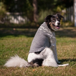 Fashion Pet Soft Fair Isle Dog Sweater - Grey Image