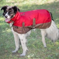 Outdoor Dog Horse Blanket Dog Coat Image