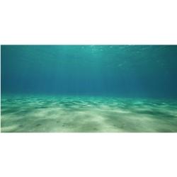 Ocean Floor Cling Background Image