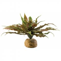 Exo-Terra Desert Star Cactus Terrarium Plant Image