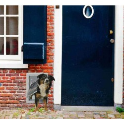 Ideal Pet Products Ruff-Weather Pet Door with Telescoping Frame Image