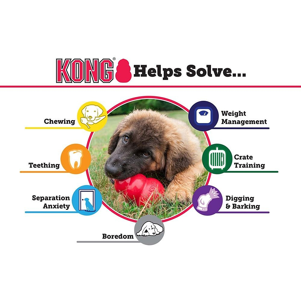 NEW Kong Small Extrme Goodie Ball Dog Puppy Toy Squeak Treat