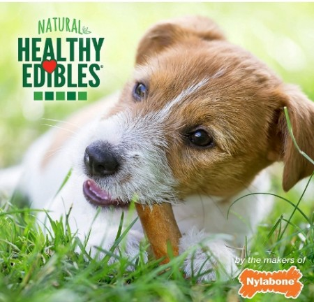 Nylabone Healthy Edibles Chews - Roast Beef & Chicken Flavor - Petite alternate img #6