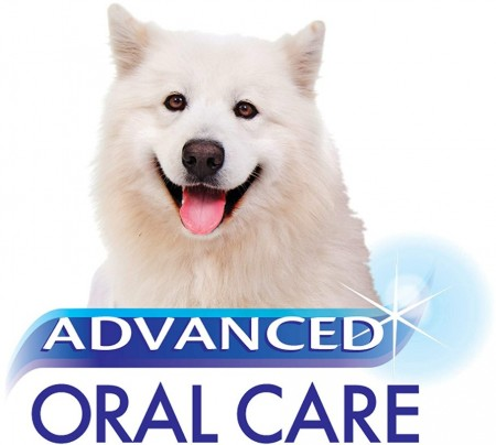Nylabone Advanced Oral Care Water Additive Ultra Clean Tartar Control for Dogs alternate img #4