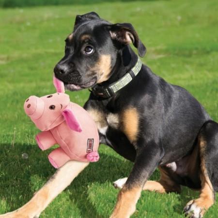 KONG Phatz Dog Toy Pig alternate img #3