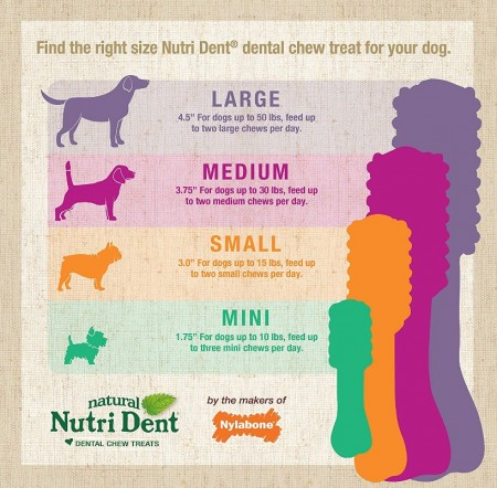 Nylabone Natural Nutri Dent Fresh Breath Limited Ingredients Mini Dog Chews alternate img #3