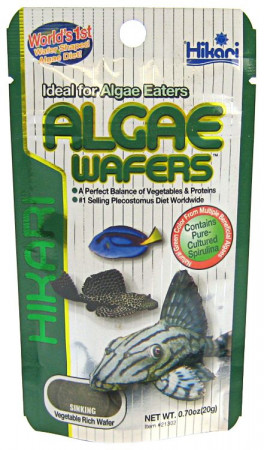 Hikari Algae Wafers Sinking Vegetable Rich Wafers alternate img #1