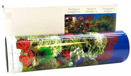 Blue Ribbon Freshwater Garden/Caribbean Coral Reef Dbl Sided Background alternate img #1