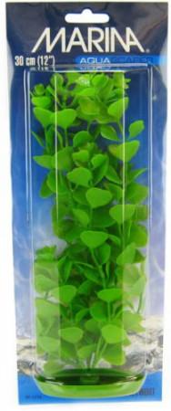 Marina Aquascaper Moneywort Plant alternate img #1