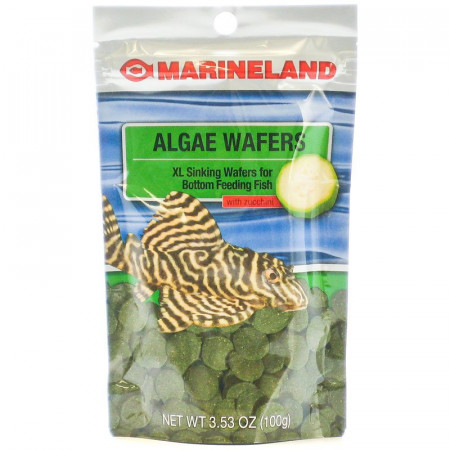 Marineland Algae Wafers with Zucchini alternate img #1