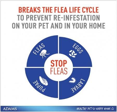 Adams Plus Flea & Tick Collar - Large Dogs alternate img #4