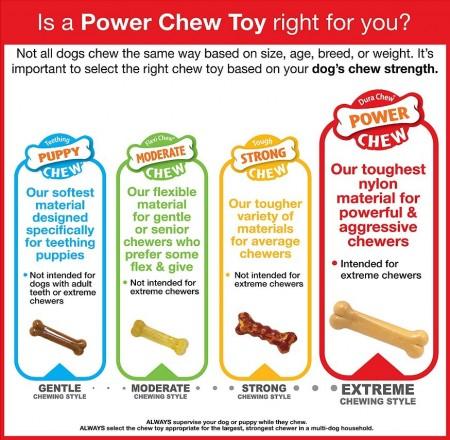 Nylabone Dura Chew Power Chew Flavor Medley Textured Ring Bone - Petite alternate img #4