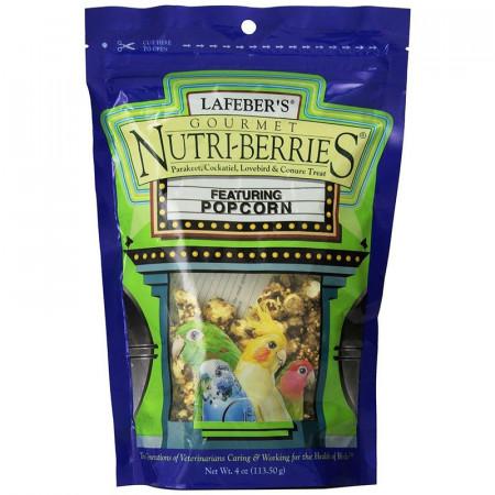 Lafeber Gourmet Nutri-Berries with Popcorn - Parakeet, Cockatiel & Conure Treat alternate img #1