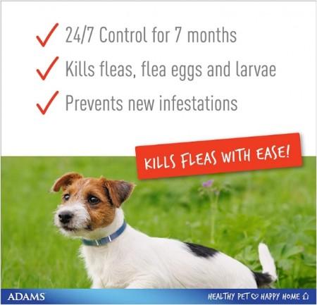 Adams Plus Flea & Tick Collar - Large Dogs alternate img #2