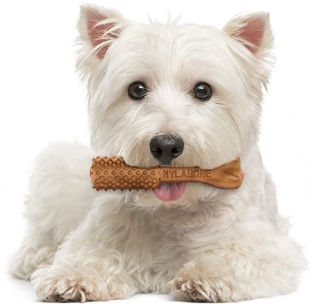 Nylabone Natural Nutri Dent Complete Filet Mignon Small Dog Chews alternate img #4