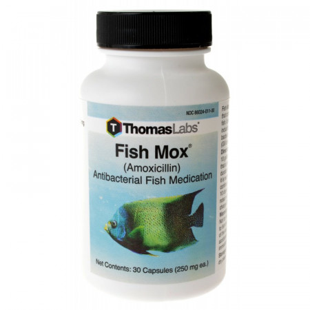 Thomas Labs Fish Mox Amoxicillin alternate img #1
