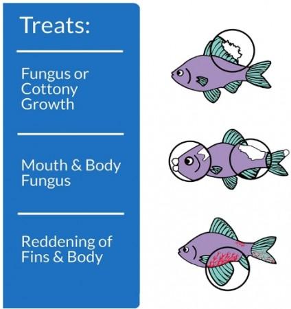 API Pimafix Antifungal Fish Remedy alternate img #3
