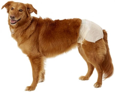 DogIt Clean Disposable Diapers for Dogs X-Large alternate img #2