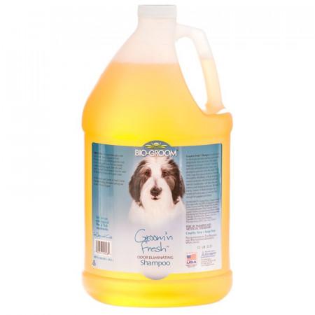 Bio Groom Groom n Fresh Shampoo alternate img #1