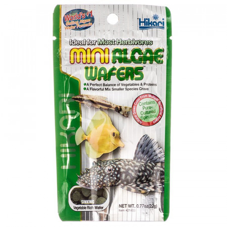 Hikari Mini Algae Wafers Sinking Herbivore Food alternate img #1