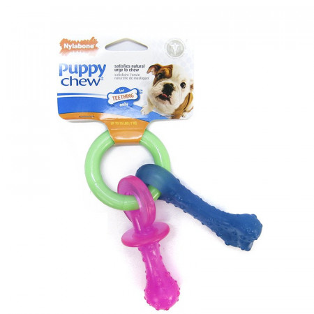 Nylabone Puppy Chew Teething Pacifier alternate img #1