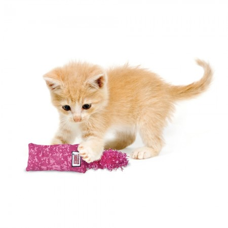 KONG Kickeroo Catnip Toy for Kittens alternate img #4