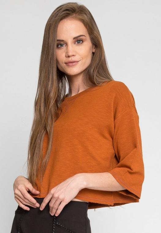 Zenith Crop Sweatshirt in Brown alternate img #2