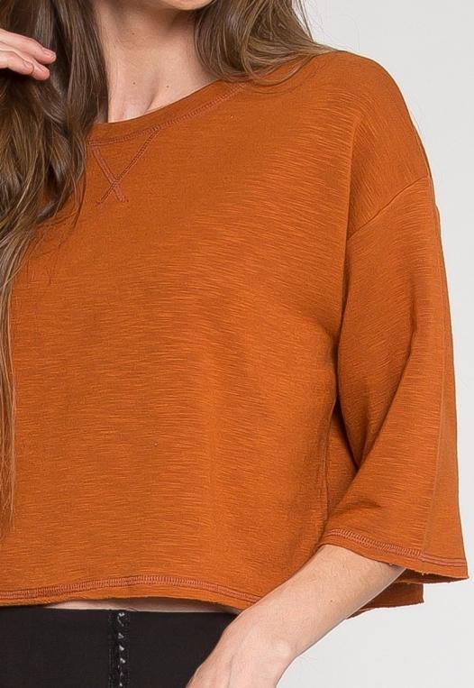 Zenith Crop Sweatshirt in Brown alternate img #6