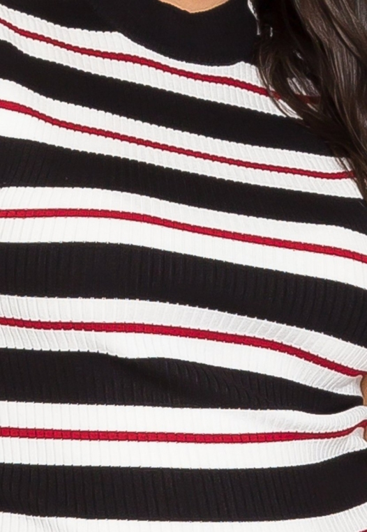 Plus Size Charger Knit Stripe Top in Red alternate img #6