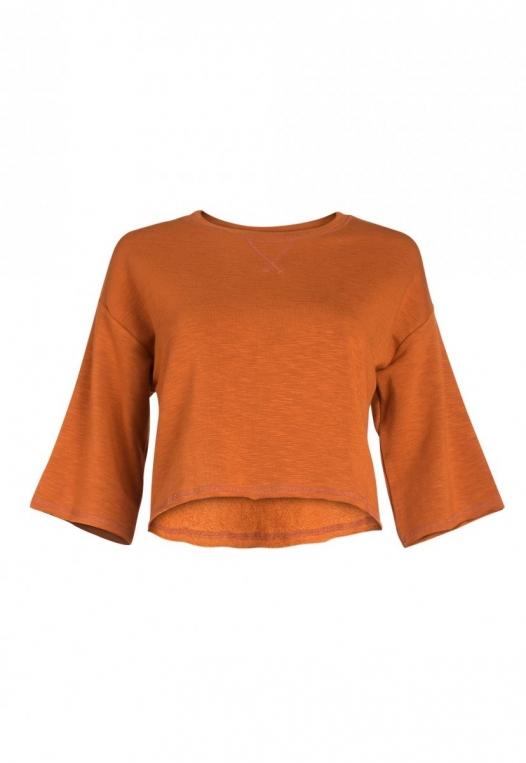 Zenith Crop Sweatshirt in Brown alternate img #7