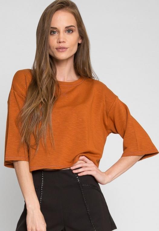 Zenith Crop Sweatshirt in Brown alternate img #1