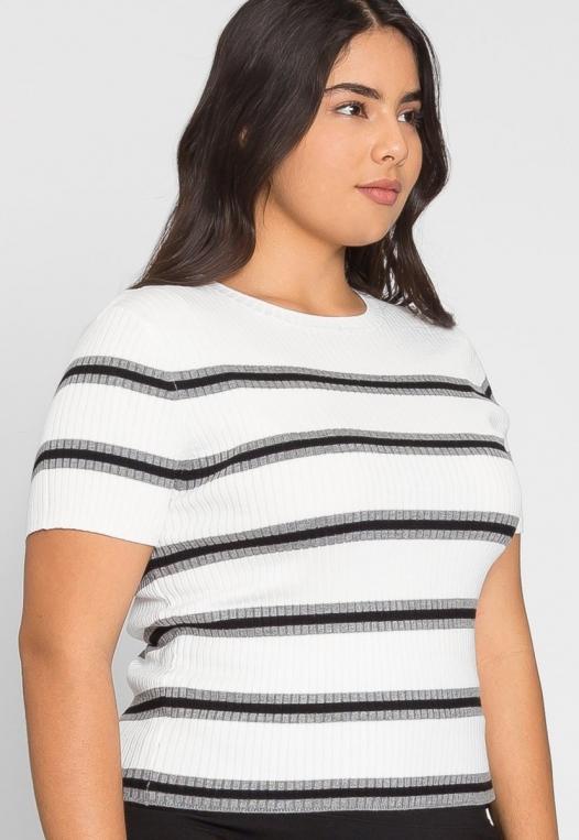 Plus Size Rib Knit Stripe Top in Gray alternate img #2