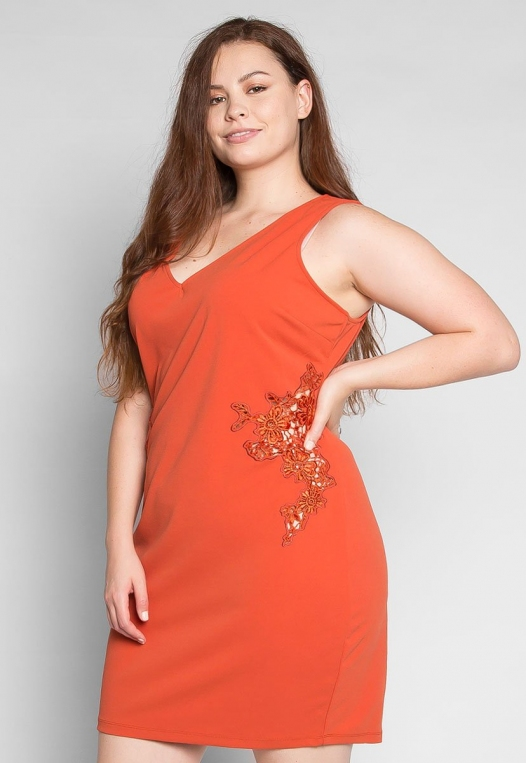 Plus Size Bora Bora Applique Dress alternate img #3