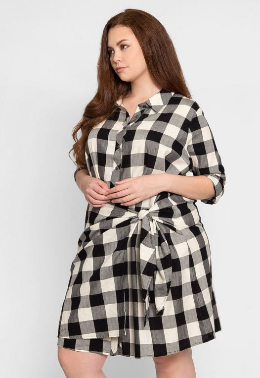 Plus Size Buffalo Plaid Dress alternate img #3