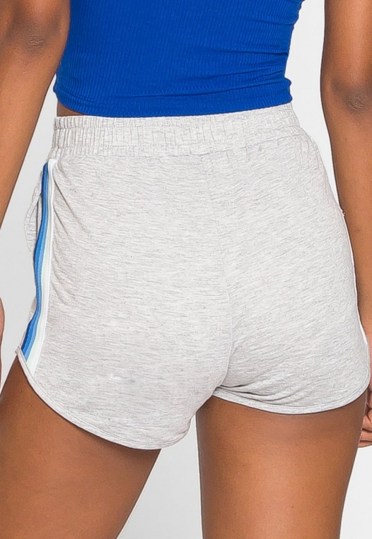 Hills Side Tape Knit Shorts in Gray alternate img #3