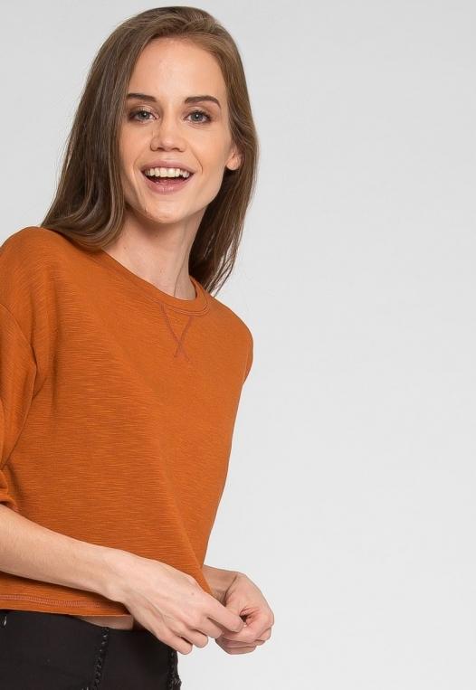Zenith Crop Sweatshirt in Brown alternate img #5