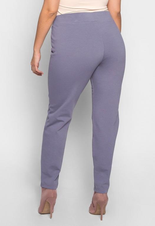 Plus Size Macaroon V-Waist Leggings in Gray alternate img #2