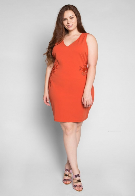 Plus Size Bora Bora Applique Dress alternate img #4