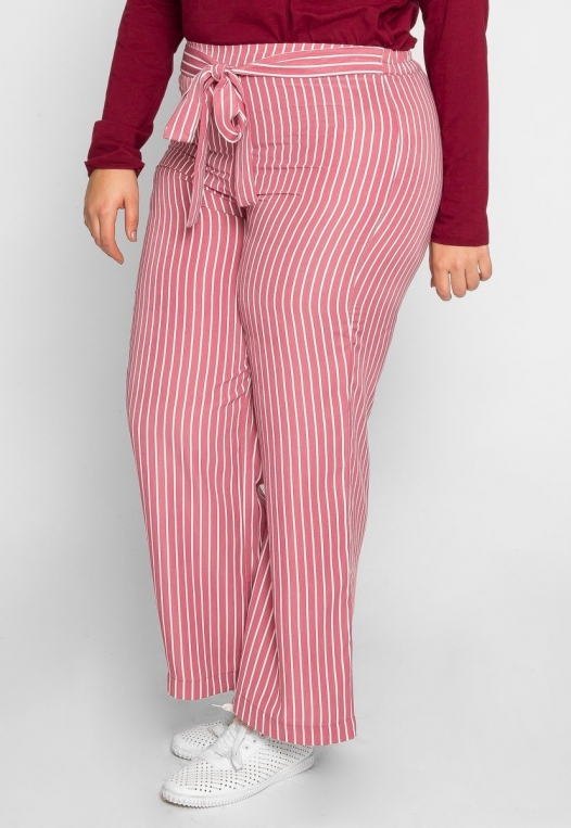 Plus Size Quest Stripe Palazzo Pants in Pink alternate img #3