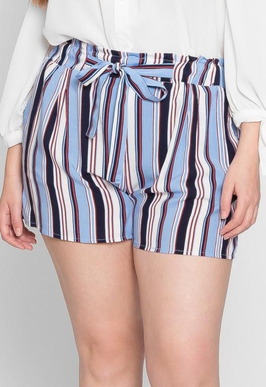 Plus Size Venice Beach Stripe Shorts in Light Blue alternate img #3