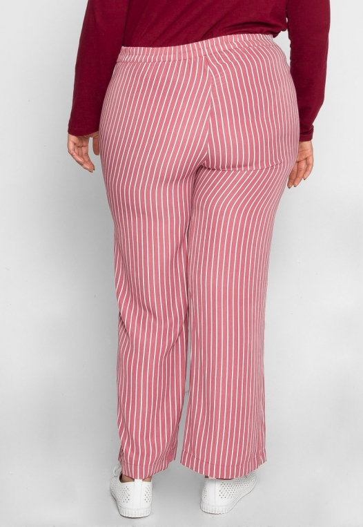 Plus Size Quest Stripe Palazzo Pants in Pink alternate img #2