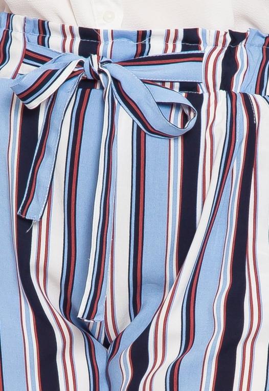 Plus Size Venice Beach Stripe Shorts in Light Blue alternate img #6