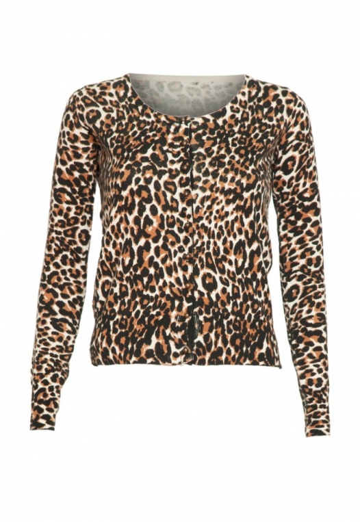 Wild Side Cardigan in Brown Leopard alternate img #7