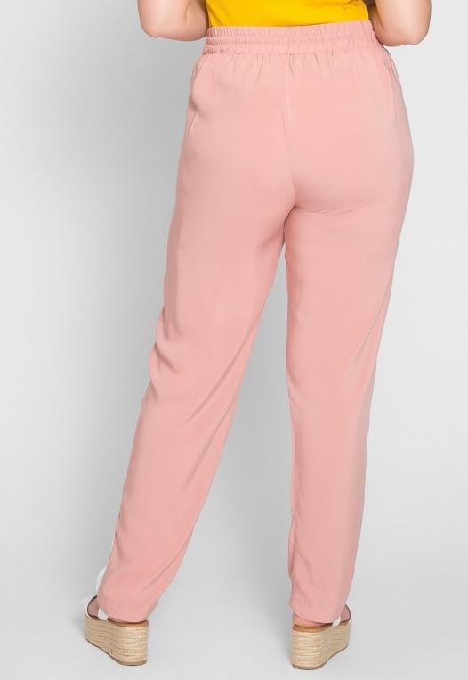 Plus Size Side Stripe Knit Pants in Blush alternate img #2