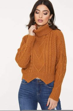 See Cable Knit Roll Neck Jagged Crop in Brown